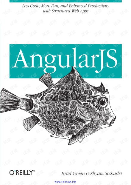 AngularJS高级编程(英文原版)