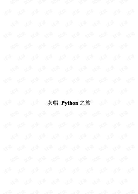 Python灰帽子中文.pdf