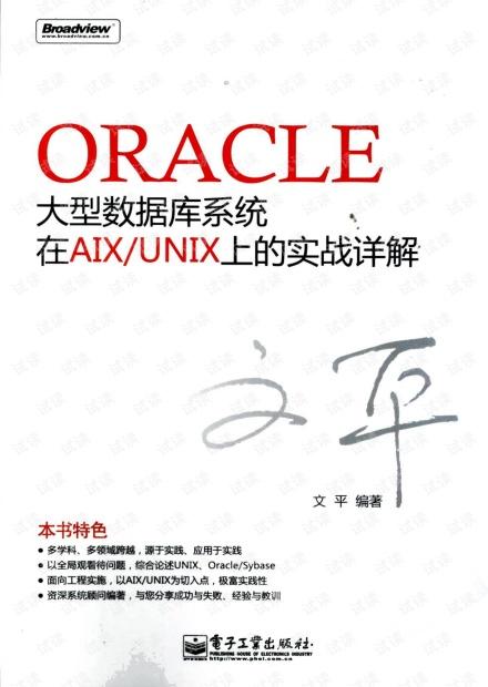 ORACLE大型数据库系统在AIX/UNIX上的实战....pdf
